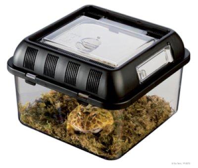 EXOTERRA Breeding Box Small (20.5x20.5x14 cm)