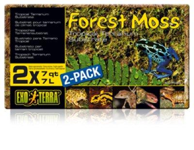 EXOTERRA FOREST MOSS terraariosammal 7L