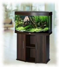 Juwel vision 180 kaarevalasinen akvaariokokonaisuus