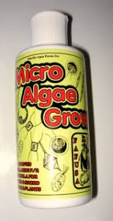 Micro algae grow Planktonin lannoite 175ml