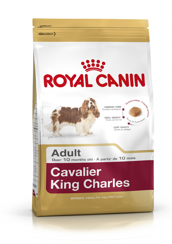 RC Cavalier King Charles Adult 7.5 kg