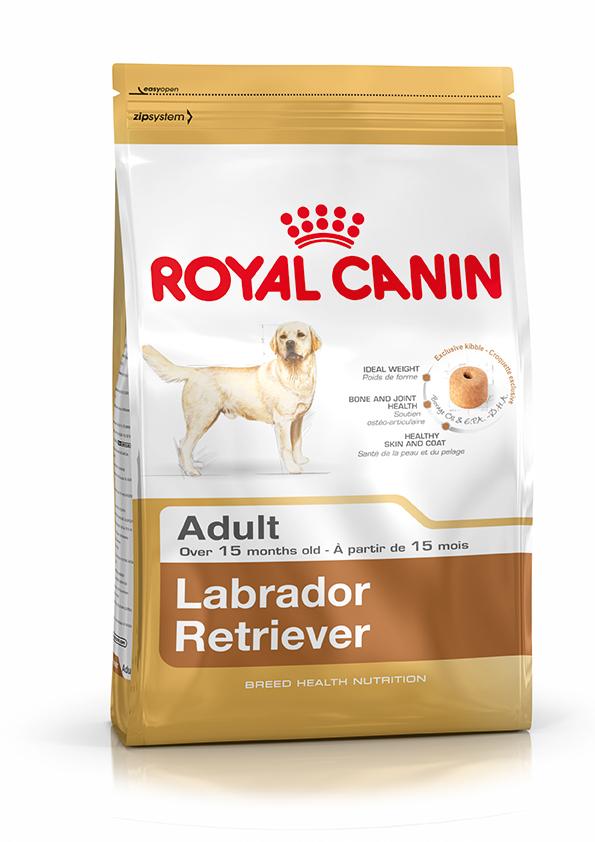 RC Labrador Adult 12 kg
