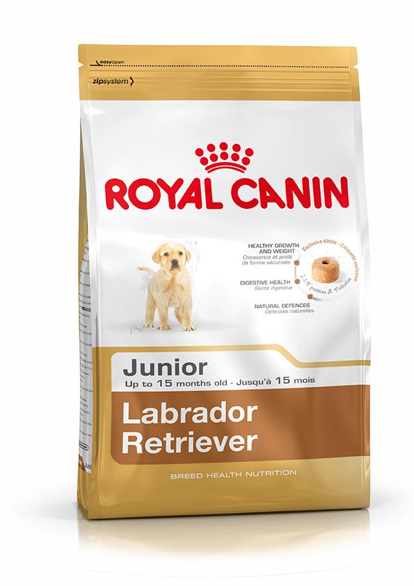RC Labrador Junior 12kg