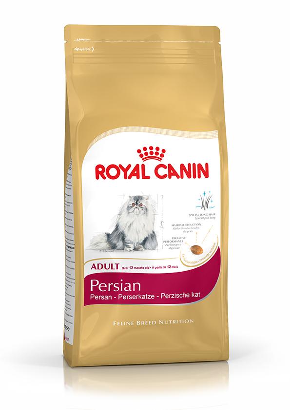 RC FHN PERSIAN ADULT 4 kg